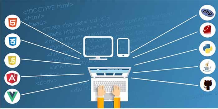 The Balanced Relation between Word Press, Web Hosting, SEO and Social Media