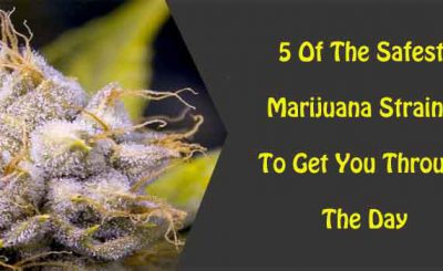 5 Of The Safest Marijuana Strains To Get You Through The Day