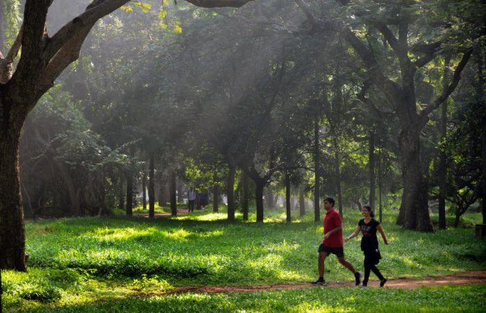 Get Outside for Health – Mental and Physical
