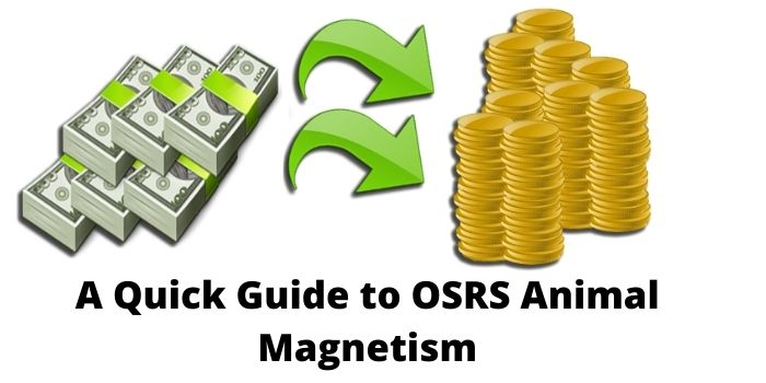 A Quick Guide To Osrs Animal Magnetism · 1300 osrs coins (to charter from port sarim to port phasmatys). gadgetflazz com
