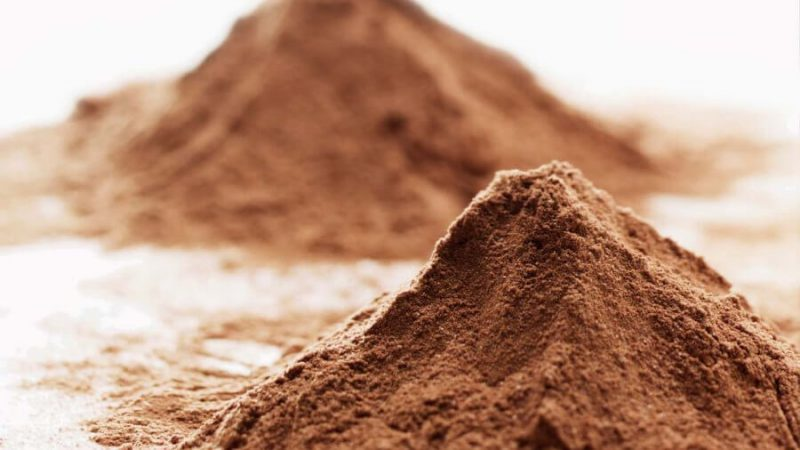 Top 6 Whey Protein Powder in India 2020 That You Must Try