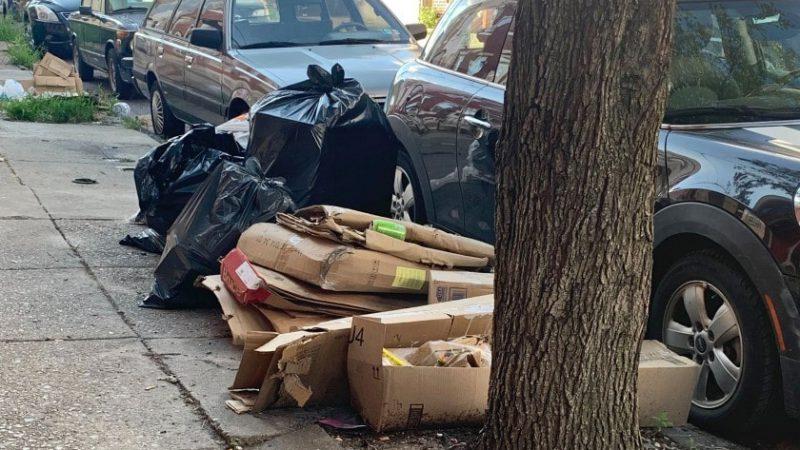 Harmful Effects of Improper Waste Removal & Management
